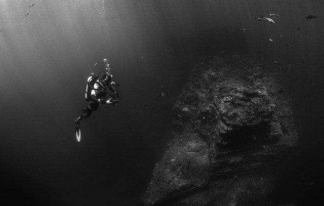 pořápěč v moři.jpg