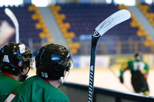 hokejisti na střídačce