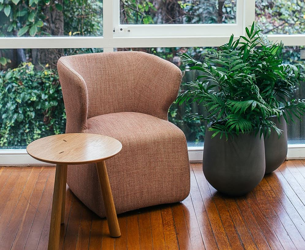 nábytek a rostliny